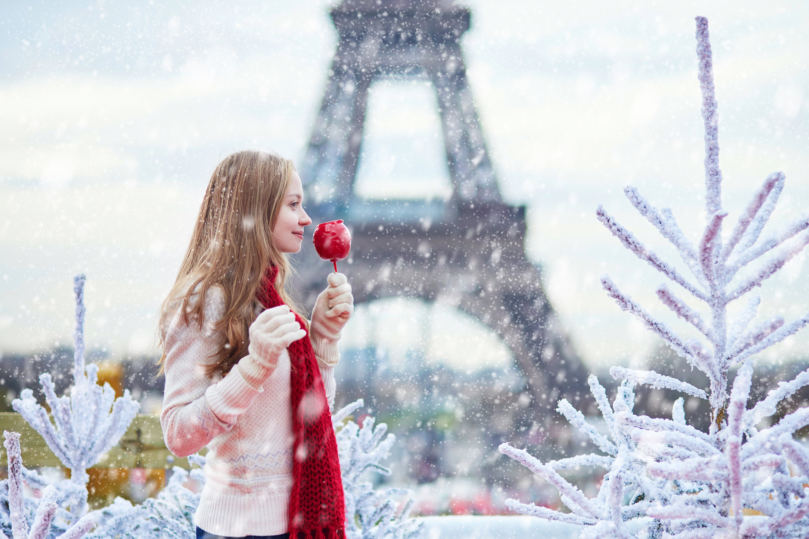 WINTER HOLIDAYS !!! Let's go to Paris !